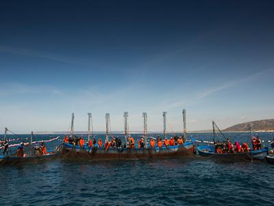 Realizando la captura del atún rojo frente a las costas gaditanas