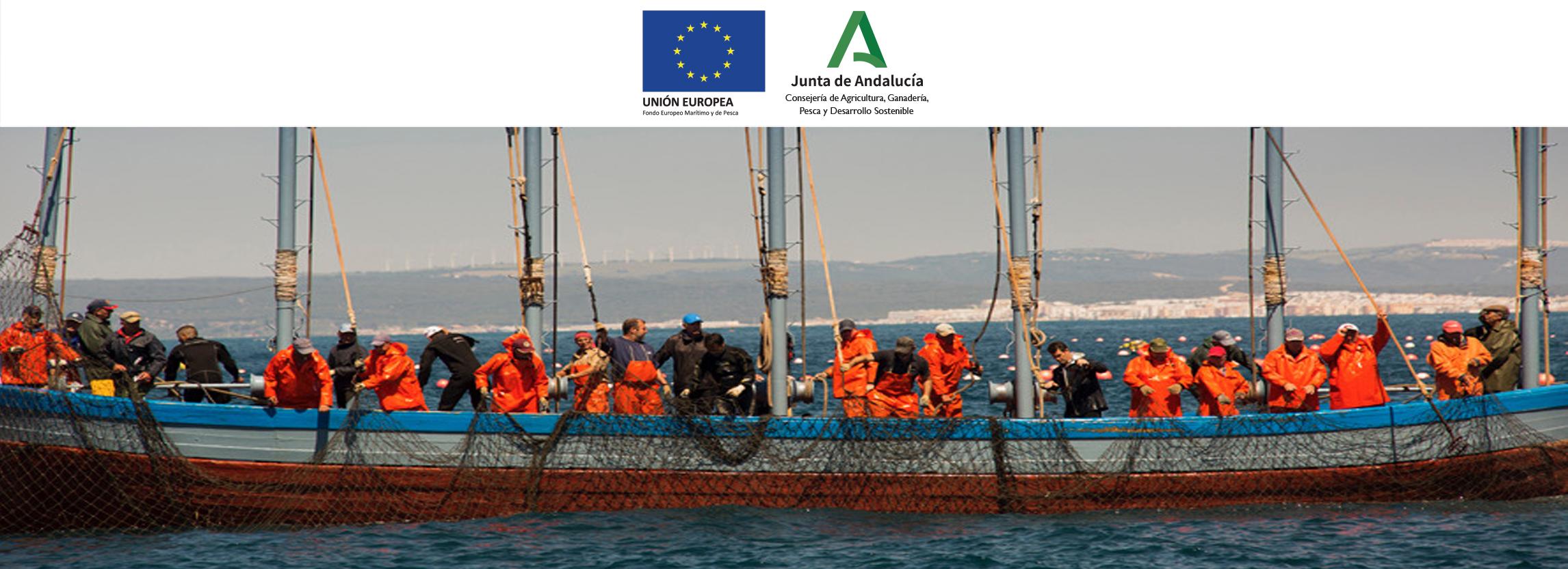 Captura del atún rojo salvaje en las almadrabas gaditanas